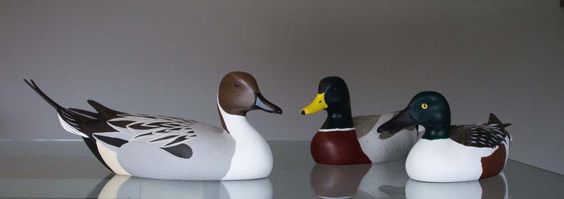 Blettes en bois de la baie de Somme représentant un canard colvert, un canard pilet et un canard souchet