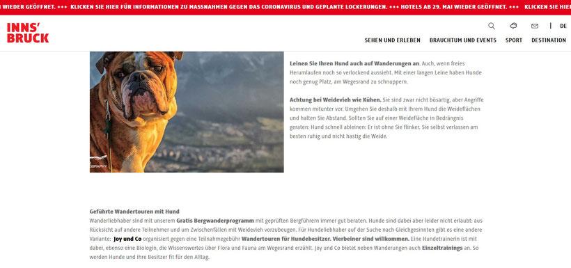 https://www.innsbruck.info/innsbruck-city/erleben/mit-hund-in-innsbruck.html
