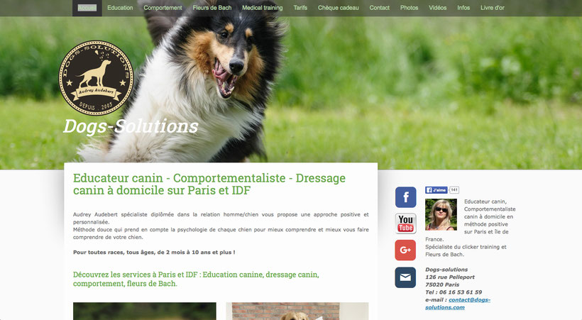 Nouveau site dogs-solutions