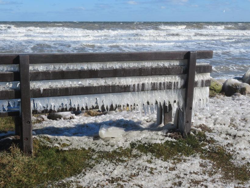 März 2018 - der eiskalte Sturm hat alles in eine Eislandschaft verwandelt    eb