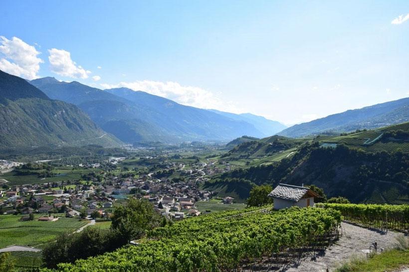 Das Dorf Salgesch