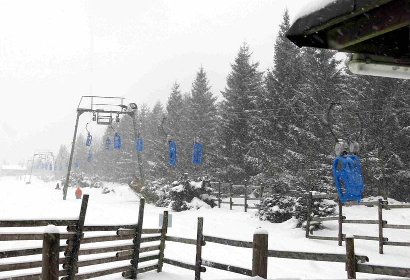 Winterspaziergang Torfhausmoor
