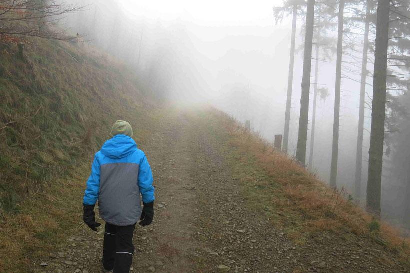 Wanderweg Goslar