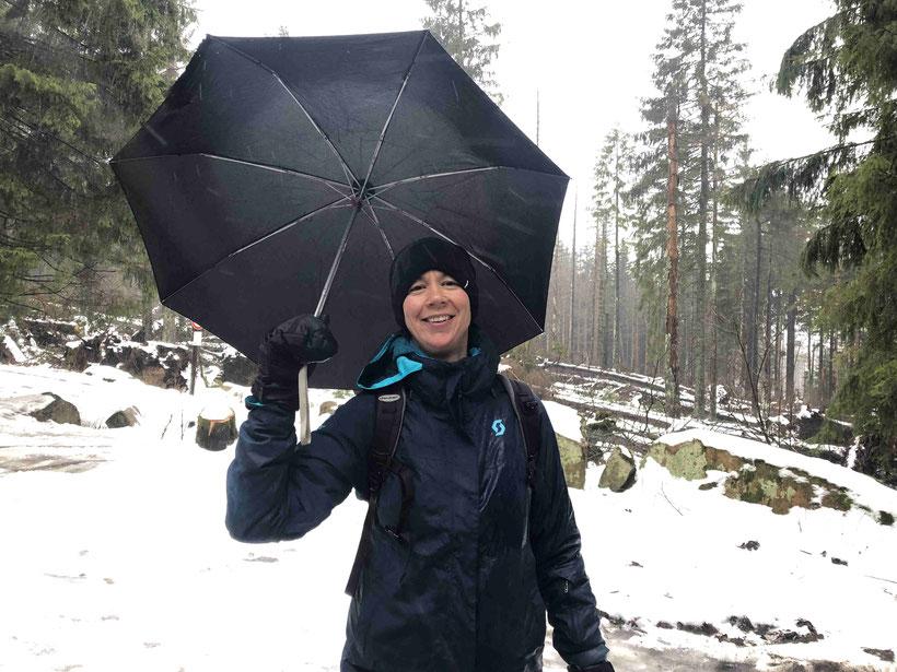 Harz, Regen