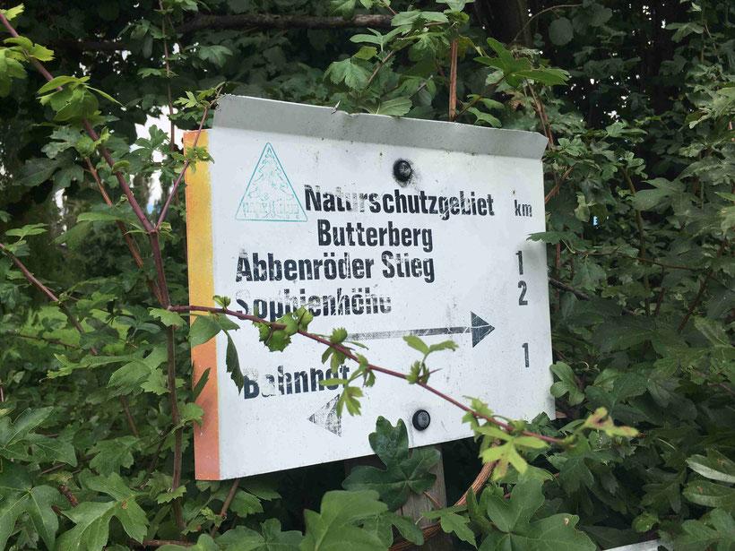 Altes, zugewachsenes Wanderschild bei Bad Harzburg. Naturschutzgebiet Butterberg