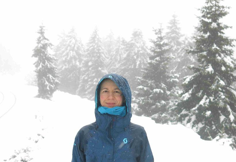 Schnee, Harz