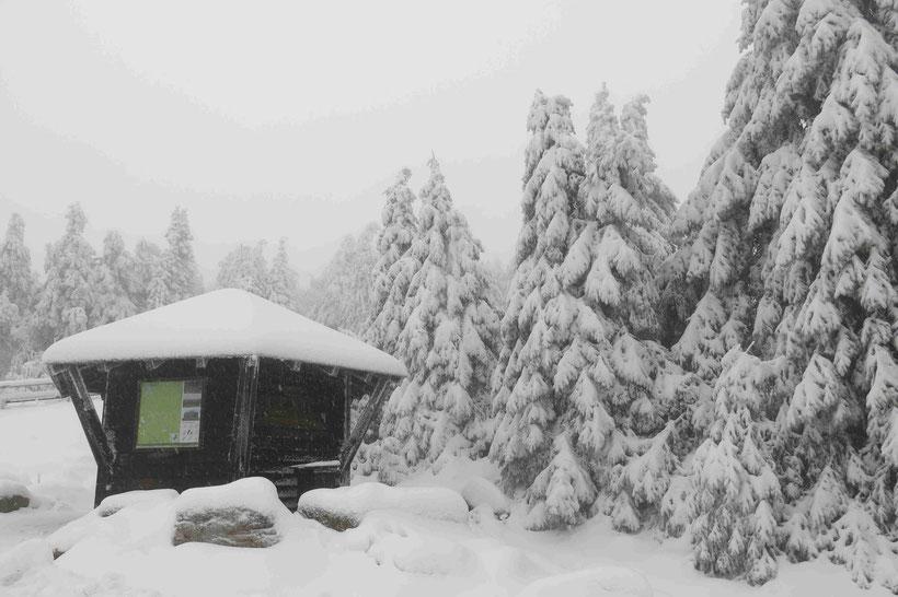 Schnee, Harz, Schutzhütte
