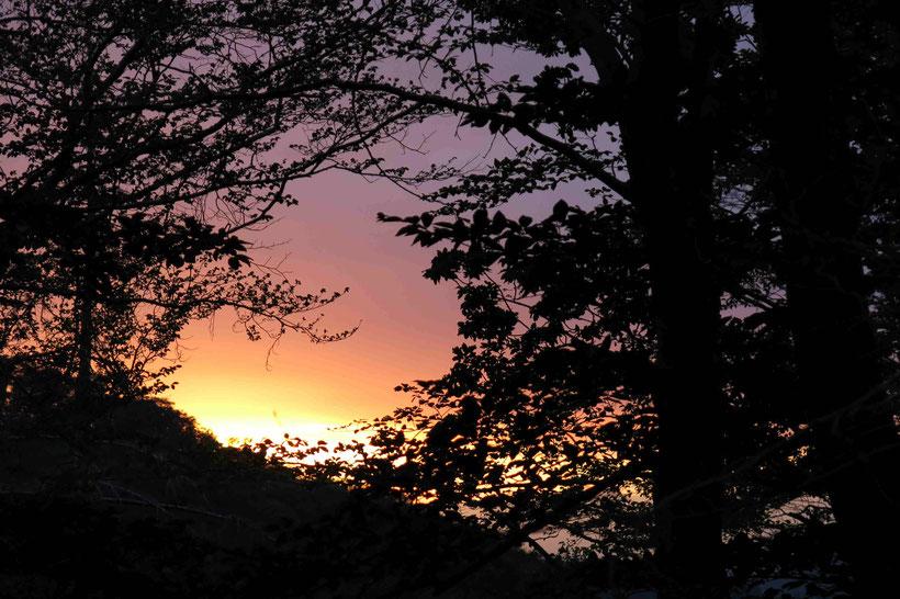Sonnenuntergang, Harz
