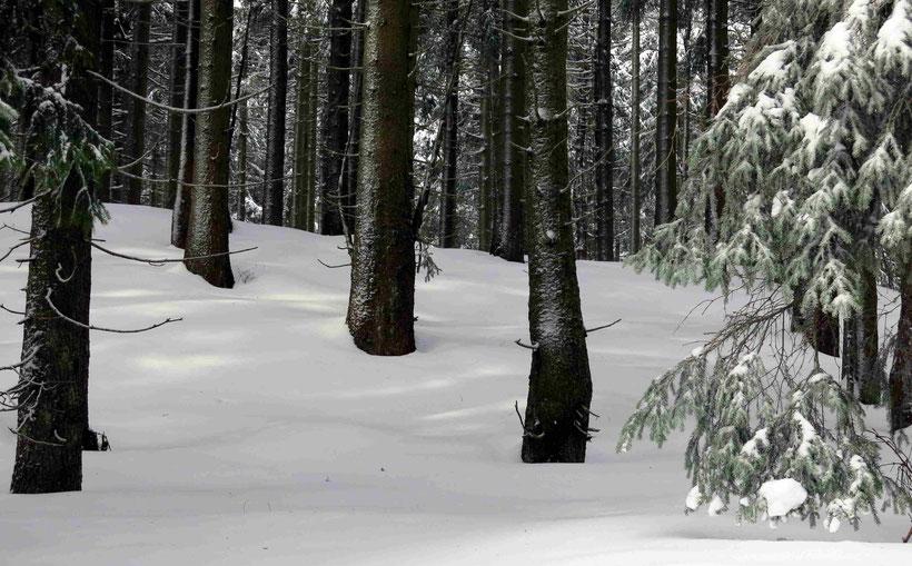Sonnenberg, Schneewittchen-Klippen