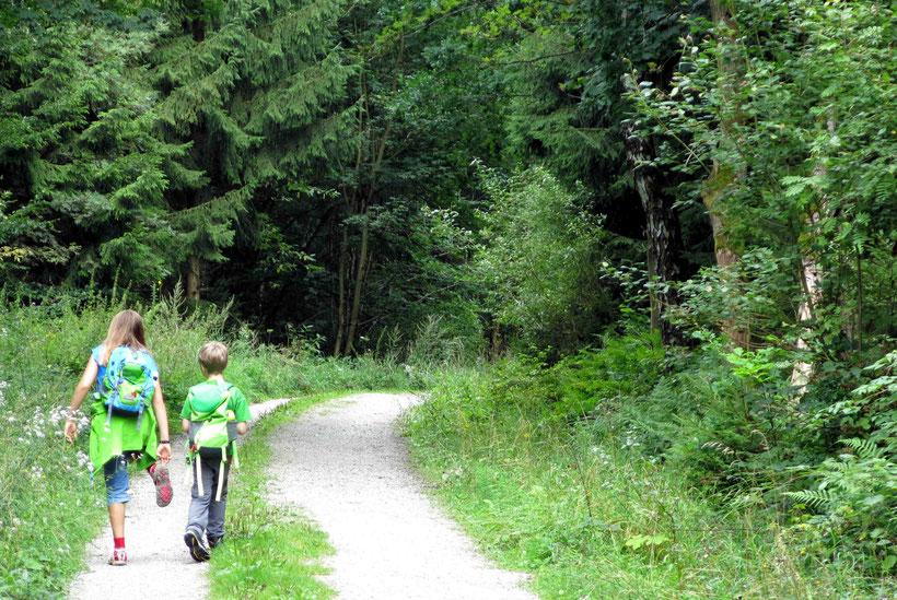 Wandern auf dem Harzer Hexenstieg