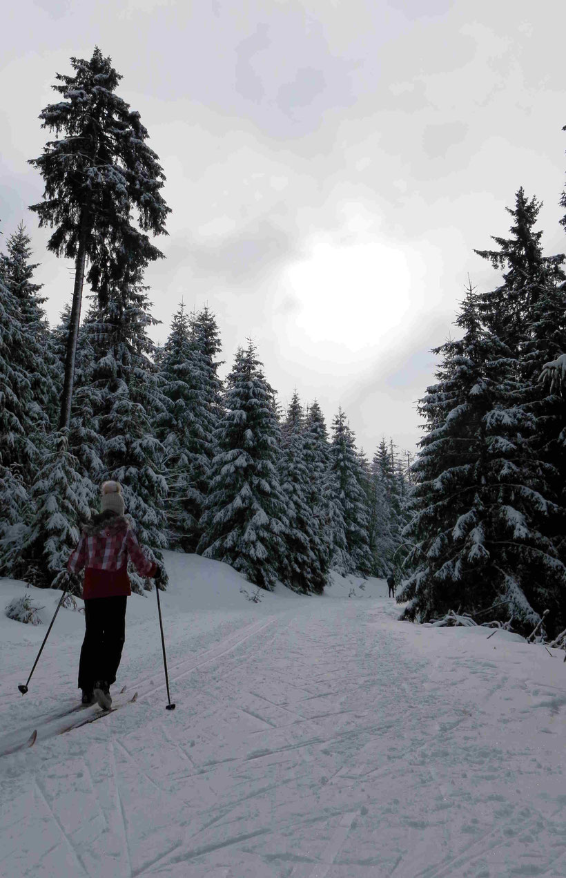 Sonnenberg, Langlauf, Schneewittchen-Klippen