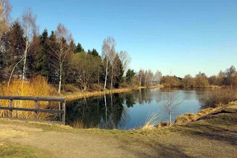 ...und haben sich dafür einen schönen Platz am Teich ausgesucht