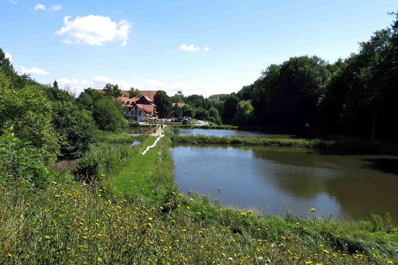 Kloster Michaelstein, Blankenburg, Teiche