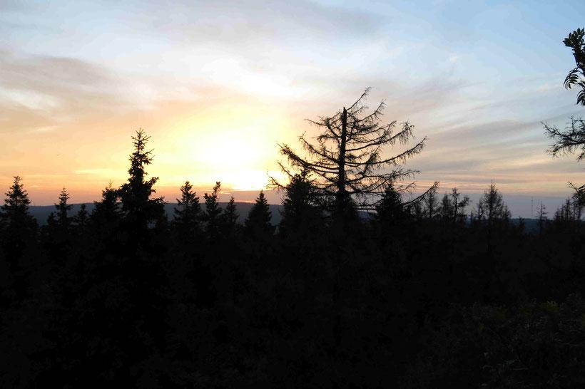 Sonnenuntergang, Achtermann, Harz