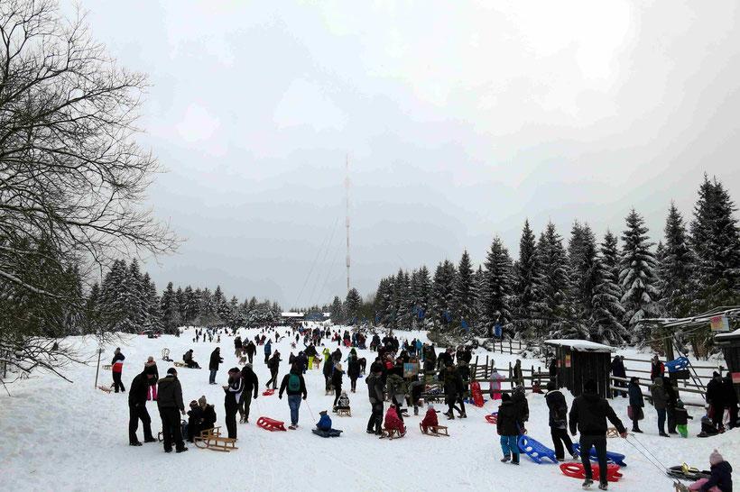 Rodeln, Torfhaus, Winter