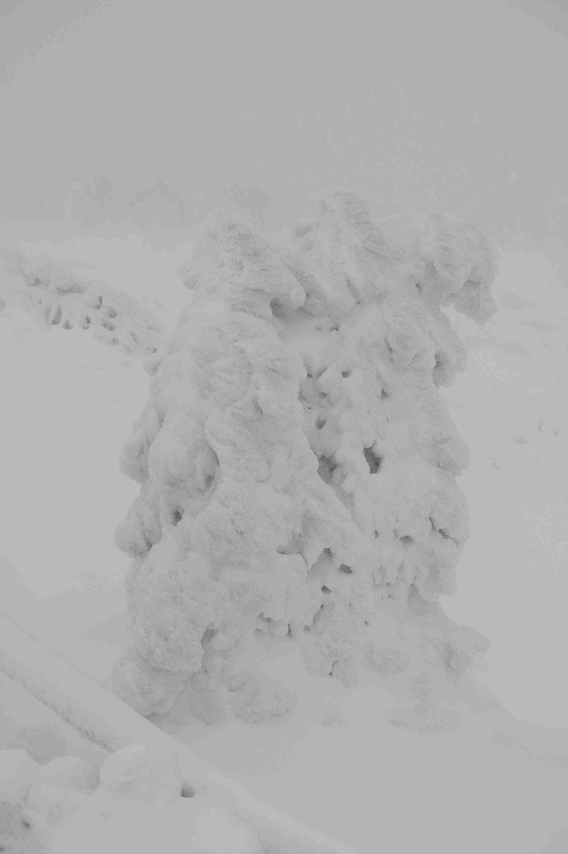 Harz, Winter