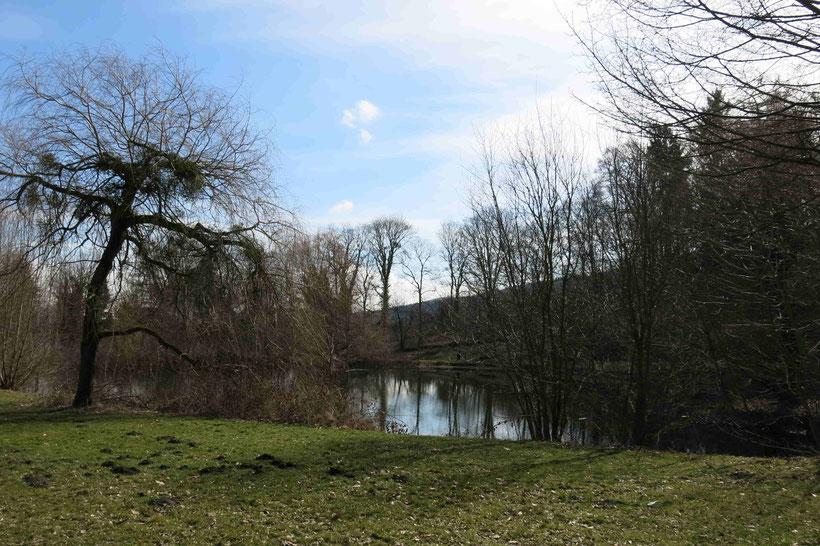 Die Tour startet am Frankenberger Teich in Goslar (Claustorwall/ Nonnenweg)