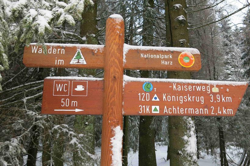 Oderbrück Langlauf