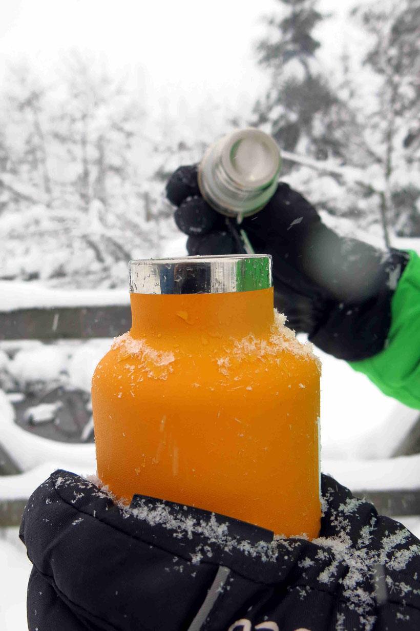 Winterspaziergang Torfhausmoor Teekanne