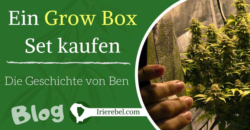 Ein Grow Box Set kaufen - Die Geschichte von Ben
