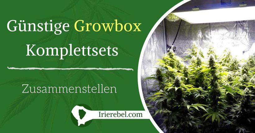 Günstige Growbox Komplettsets zusammenstellen