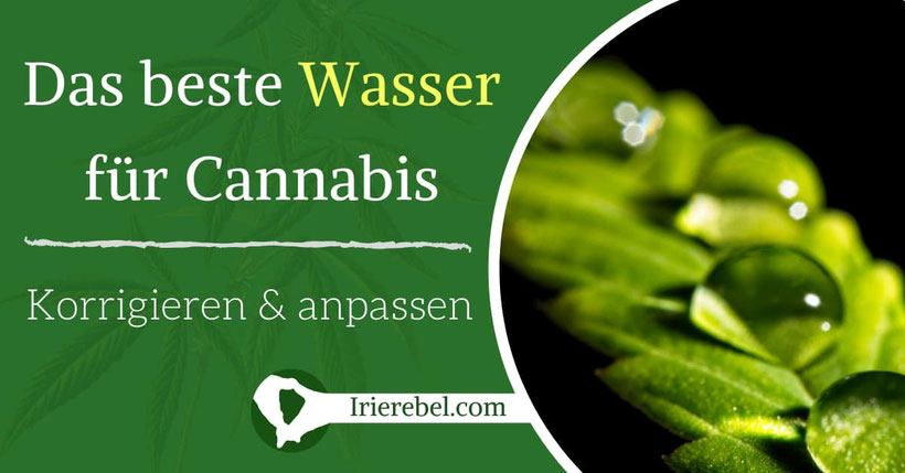 Das beste Wasser für Cannabis - Wasser korrigieren & anpassen