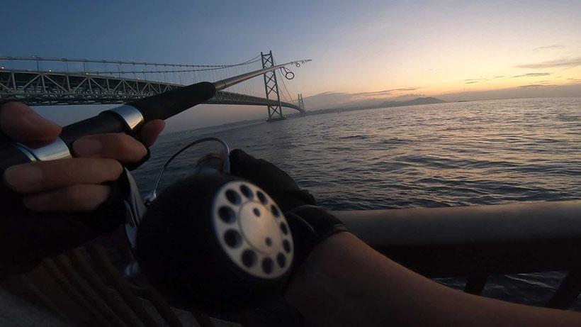 第一投 明石海峡淡路島サイド 激投ジグで青物ヒラマサ(?)獲った