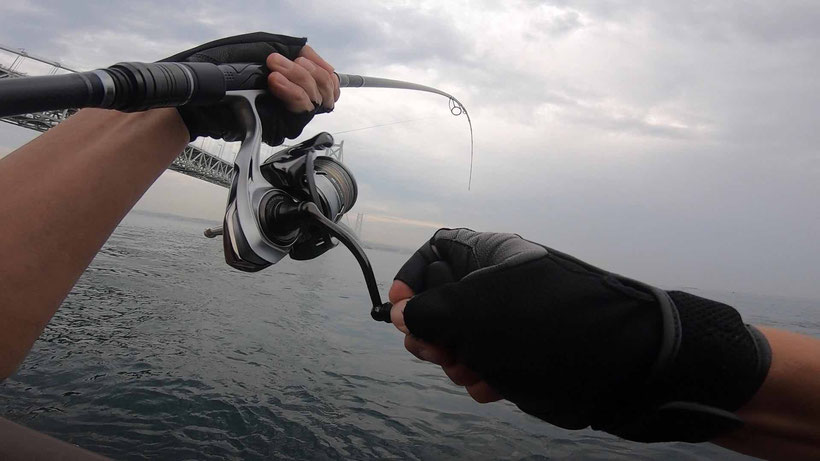 スレがヒット 明石海峡淡路島サイド 激投ジグで青物ヒラマサ(?)獲った