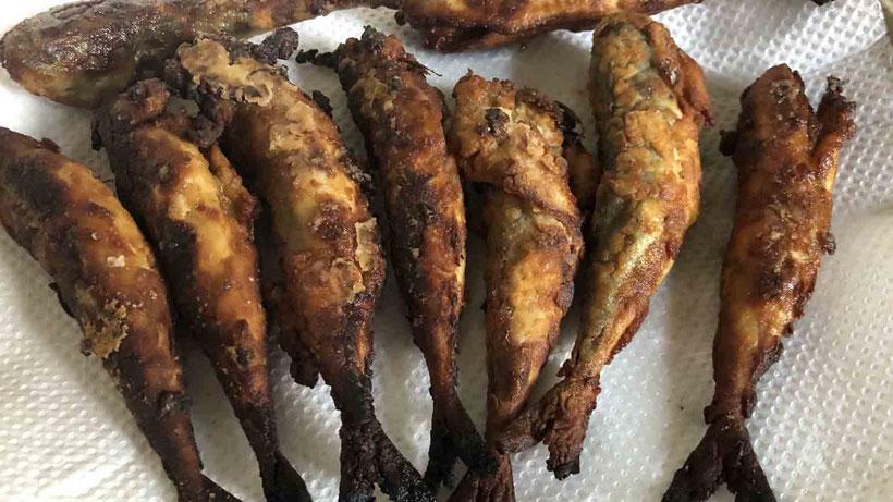 揚げたて 誰でも作れるコサバの南蛮漬けレシピ