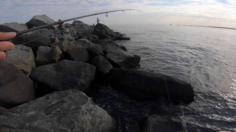 シーバスデイゲーム 若洲海浜公園人口磯での釣り 69cmゲット!
