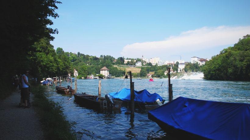 schaffaussen suisse barque bateau chutes eau forêt