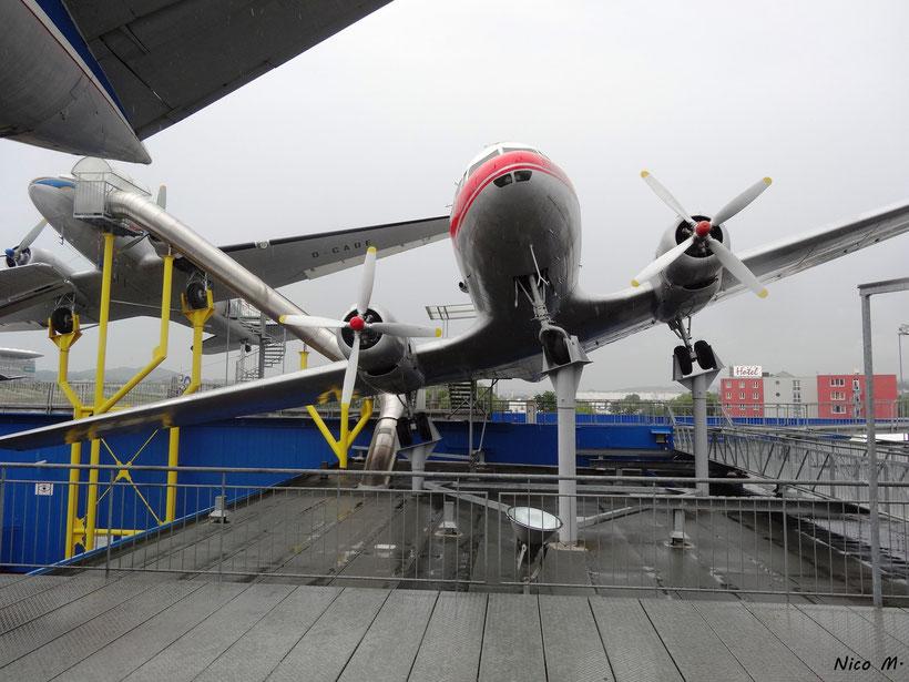 IL-18 und DC-3