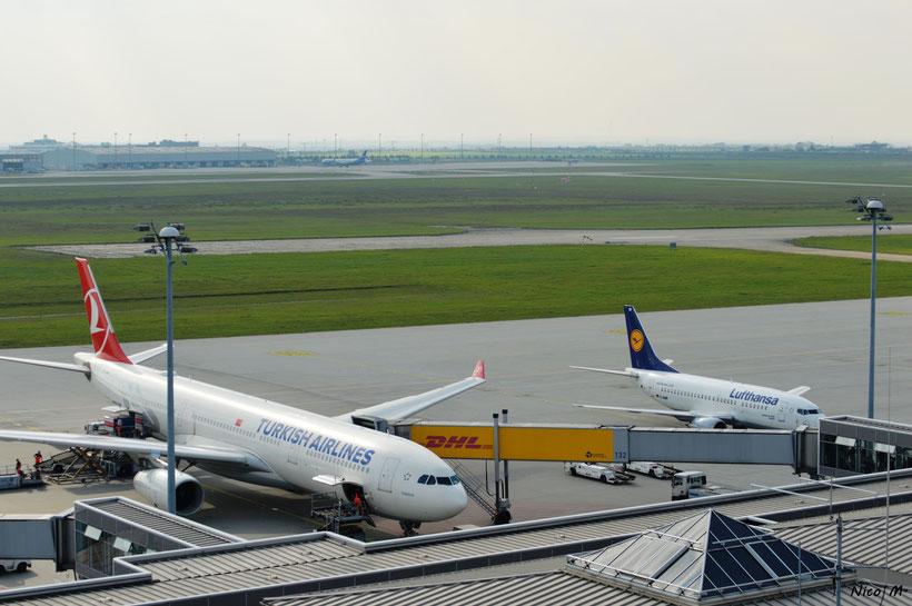 Größenvergleich zwischen A330-300 und B737-500