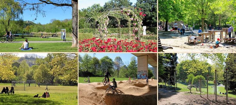 Grüttpark in Lörrach mit Rosengarten, Abenteuerspielplatz, Sportanlagen, Pumptrack und Outdoor-Fitness