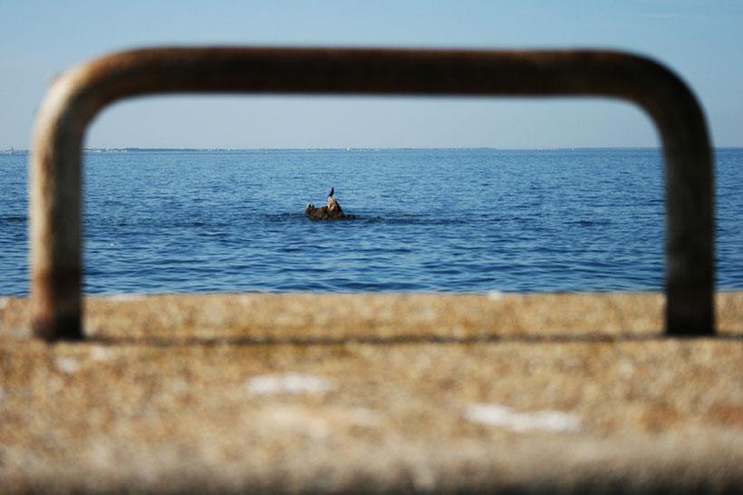 Bretagne ile houat photographe tourisme abracadanews abracadapix photography nadine jestin