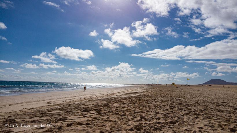 Fuerteventura Sehenswürdigkeiten Flag Beach