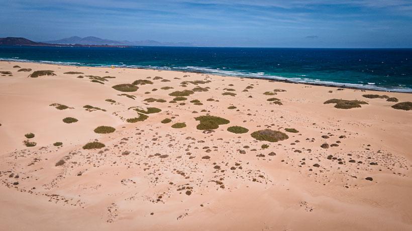 Lanzarote Playa Grande Strand