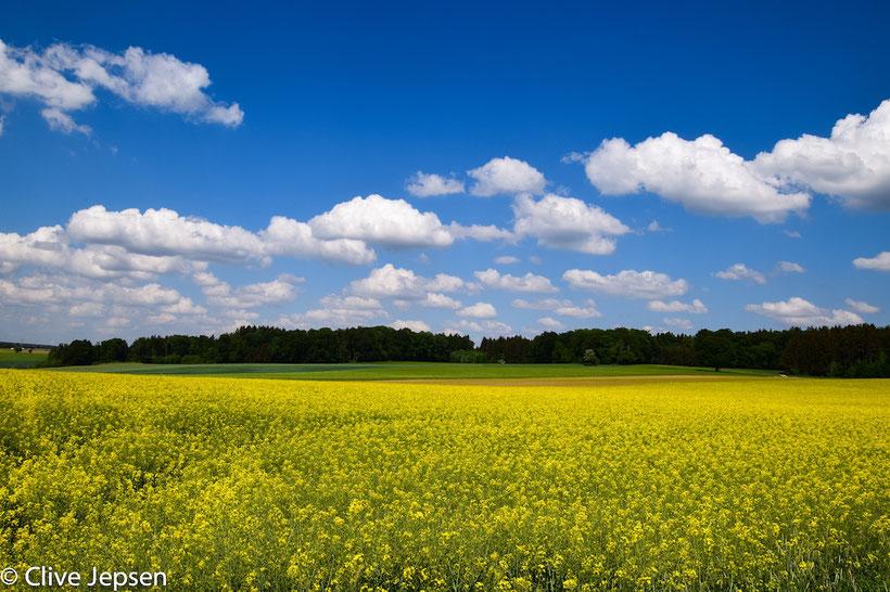 Diese Wolken, blauer Himmel und das Rapsfeld  ließen mich an der Bundesstraße spontan anhalten.  So sieht der Frühling aus.