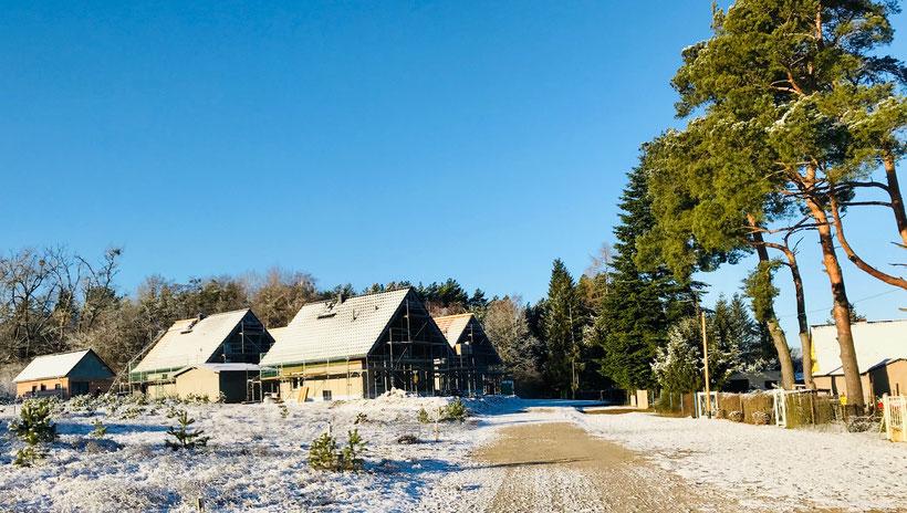 Ferienhaus, Mecklenburg, Seenplatte, Vermietung, Boot, Sauna