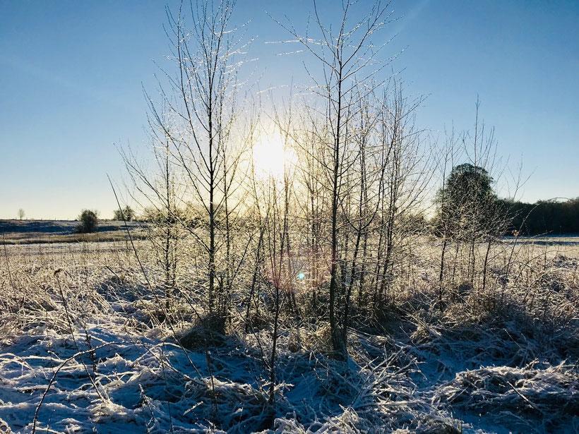 Winter, Urlaub, Ferienhaus, Sonderpreis, Rabatt, Mieten