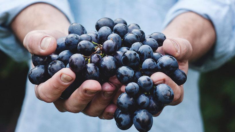 voeding dieet aanpassing mindful eten fibromyalgie