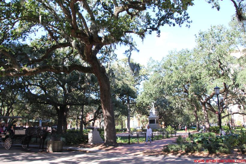Die besten Sehenswürdigkeiten und Reisetipps für Savannah. Die Plätze der Altstadt von Savannah.