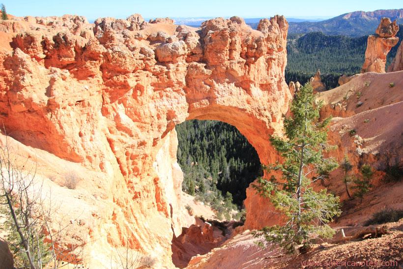 Sehenswürdigkeiten und Reisetipps Bryce Canyon Nationalpark. Aussichtspunkt Natural Bridge.