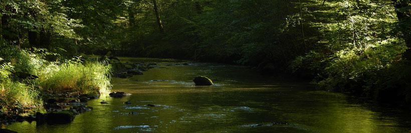 la rivière Coney