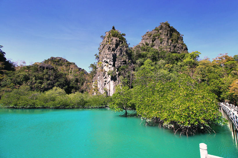 Explore the natural wonders at Kilim Karst Geoforest Park in Langkawi | One of 10 Fun Things and Activities to do in Langkawi, Malaysia © Sabrina Iovino | via @Just1WayTicket