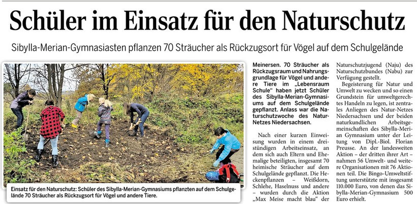 Aller-Zeitung 12.11.2015