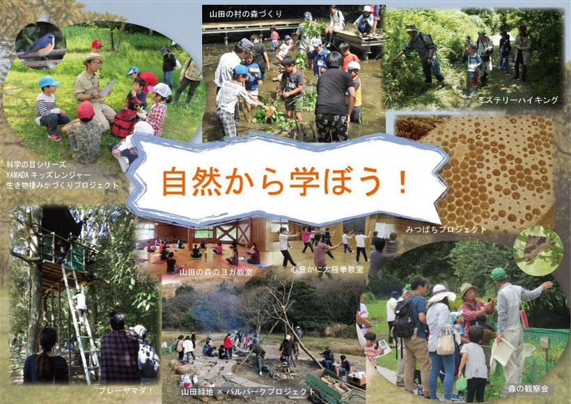 山田緑地で学ぶ!