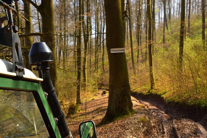 Mammutpark Offroad Land Rover Defender Prinzessinweg