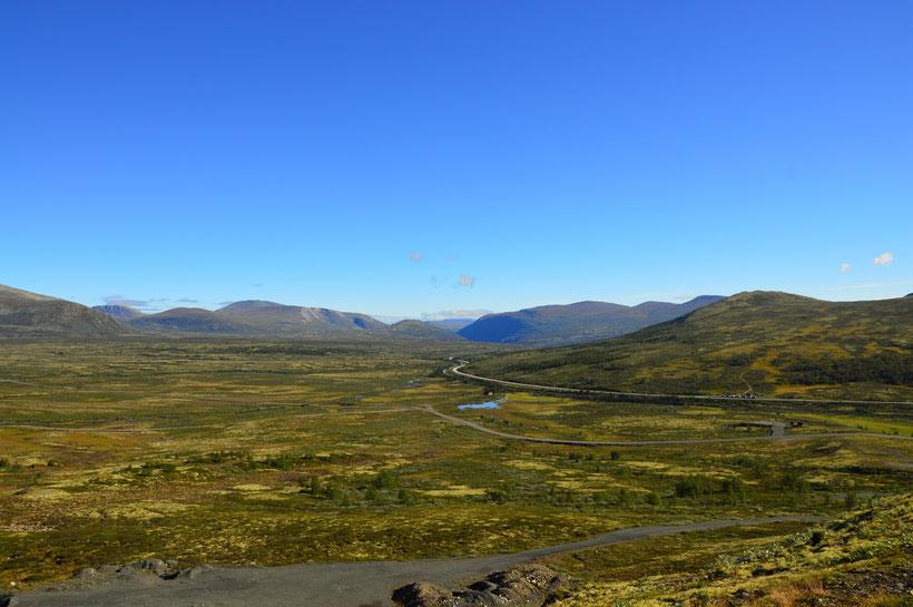 Dovrefjell Nationalpark Norwegen