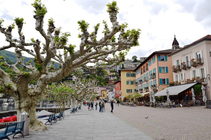 Park Hotel Brenscino in Brissago - Ascona